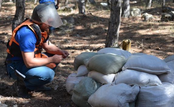 В Балаклавском районе обезвредили бомбу времён ВОВ (фото, видео)