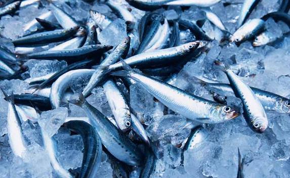 Сколько свежемороженой рыбы Крым поставил в Украину за год?