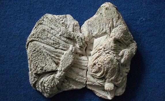 Фрагменты барельефа Богородицы с младенцем найдены в Керчи