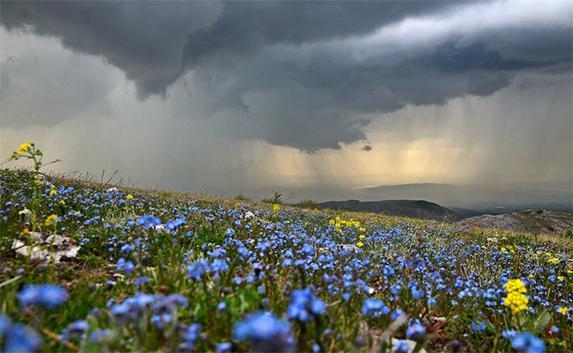 Погода в августа 2016 боровое казахстан